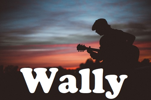 Wally 2019 Pic2 By Andreas Bradt 500 Wally featuring Micky Wolf   Blues, Rock, Pop   Trio
